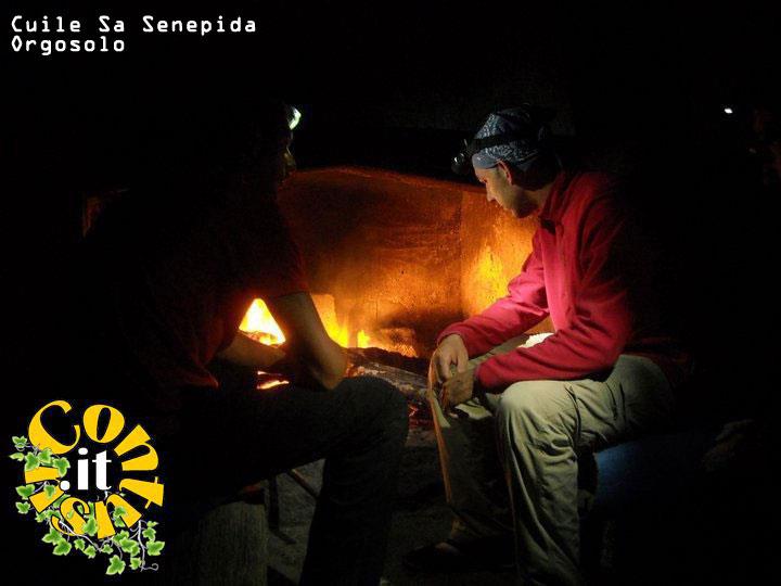sa_senepida