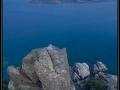 isola_cavoli2