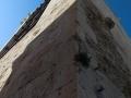 torre_san_pancrazio-16