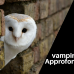 Streghe vampiro sarde: approfondimenti