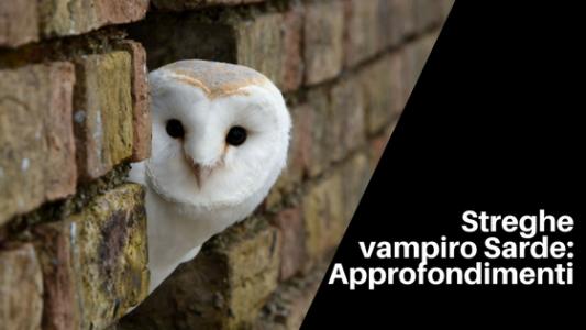 streghe vampiro sarde