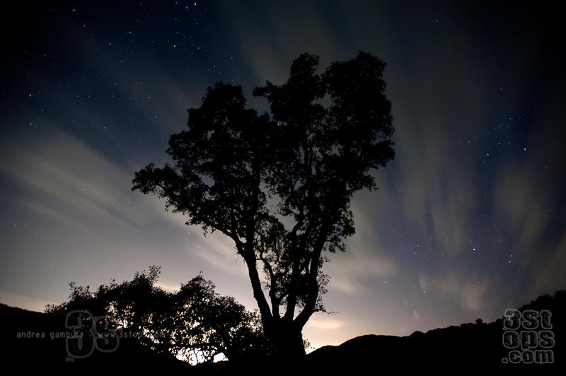 Se guardi nel buio a lungo c'è sempre qualcosa.