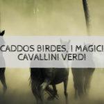 Caddos Birdes, i magici cavallini verdi