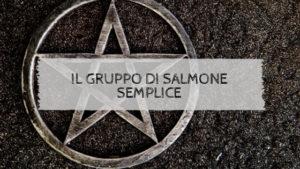 Il gruppo di Salmone semplice
